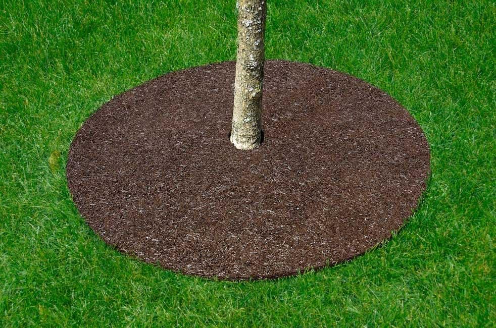 Landscape Rings For Trees