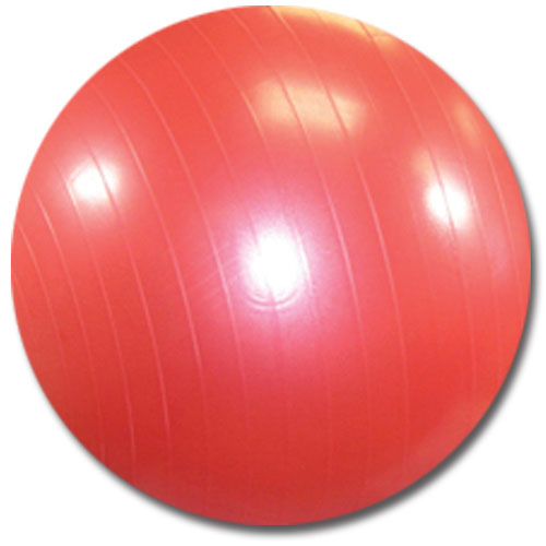 Exercise Ball Burst Resistant Comes In 55cm 65m And
