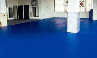 Seamless Floor For Martial Arts Gym