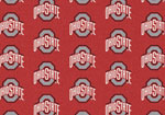 Ohio State University Rug