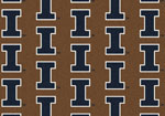 University of Illinois Rug