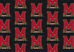 University of Maryland Rug