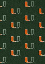 University of Miami Rug
