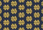 University of Notre Dame Rug