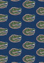 University of Florida Rug