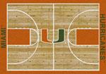 University of Miami Rugs