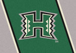 University of Hawaii Rug