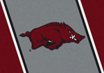 Univ of AR Fayetteville Rug