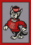 North Carolina State Univ Rugs