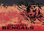 Cincinnati Bengals Area Rug
