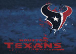 Houston Texans Area Rug