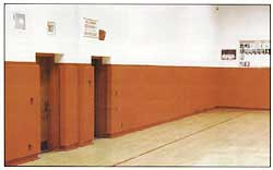 Wainscot Wall Padding For Gymnasiums In Schools And Rec
