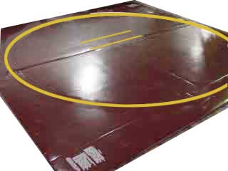 Economical Classic Wrestling Mats Made Of New Production